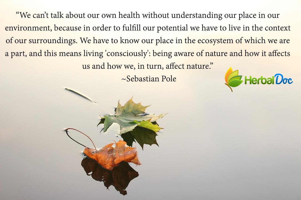balanced-nature_quote
